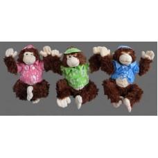 Hawaiian Monkeys
