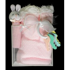 Baby Gift Packages with Carry Case #1