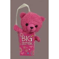 Big Brother or Big Sister Pookie Pockets Teddy Bears