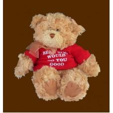 """Get Well""; Feel-Better Bears:""A Bear Hug Would Do You Good"""