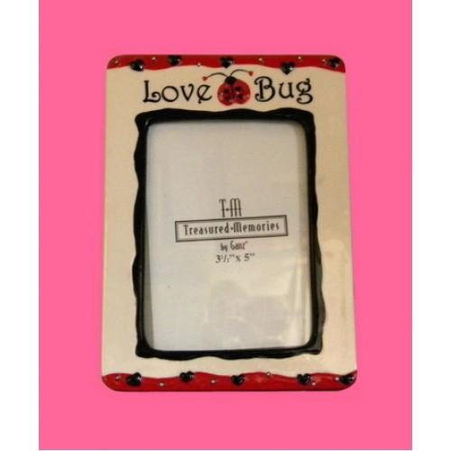 Ladybug Picture Frames Love Bug