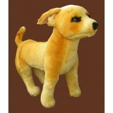 Plush Dog /Chihuahua